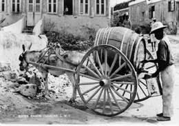 ANTILLES NEERLANDAISES ( N.W.I. ) CURACAO - Water Wagon ( Bon Plan Attelage à âne ) CPSM Photo Format CPA - Nederland - Curaçao