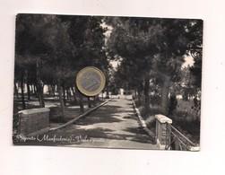 M8733 Puglia MANFREDONIA SIPONTO FOGGIA 1958 Viaggiata - Manfredonia