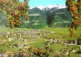 NATURNS - Bolzano (Bozen)