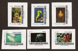 Privatpost - Biberpost - 6 Werte Fische / Seepferdchen, Anemonenfisch, Hai, Kalmar - Fische