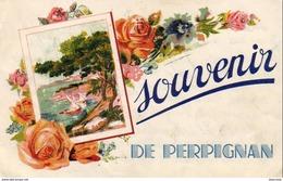 D66  PERPIGNAN  Souvenir De Perpignan - Perpignan