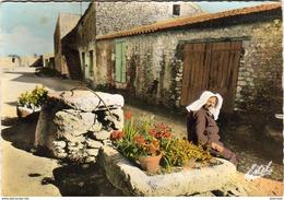 D17  ILE D'OLERON  Un Vieux Puits - Ile D'Oléron