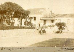 1915 Fotografia Antiga QUINTA Do MELLO Melo TORRES NOVAS. Old Photo (Santarem) PORTUGAL - Photos