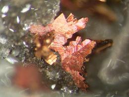 * MARCASITE Xls, Glückauf Mine, Wildermann, Harz, BRD * E7 - Minerals