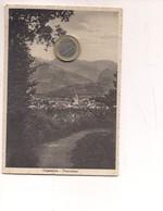 M8780 Toscana CAMAIORE 1952 Viaggiata - Italy