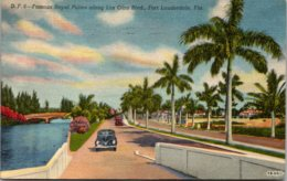Florida Fort Lauderdale Royal Palms Along Las Olas Boulevard 195