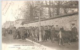 Limoges Marché Aux Boeufs De 1904 - Limoges