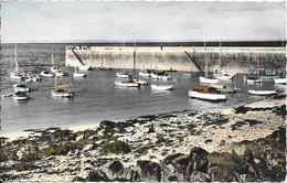 CPA-1950-22-LE VAL ANDRE-La JETEE Et Le PORT De PIEGU-TBE - France