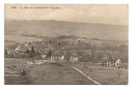 VIEILLE CARTE POSTALE DE LE BAS DE SACHET ( CORTAILLOD - CANTON NEUCHATEL ) )  ET LE VIGNOBLE , 1911 . - NE Neuchâtel