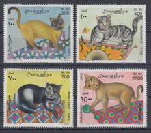 Somalia, 1997. [n0861] Cats - Hauskatzen