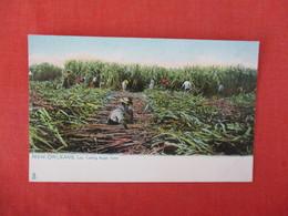 Tuck Series   Cutting Sugar Cane   Louisiana > New Orleans   Ref 3287 - New Orleans