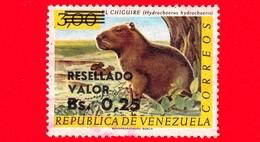 VENEZUELA - Usato - 1965 - Fauna - Animali - El Chiguire - Hydrochoerus - Resellado 0.25 Su 3.00 - Venezuela