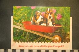 CP,  Chiens Dans Une Brouette, Sans Toi...on Ne Se Deride Pas D'un Poil,   Humour, - Chiens