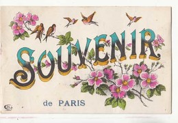 CPA Paris- Souvenir :  Achat Immédiat - Gruss Aus.../ Grüsse Aus...