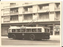 Photo - Gros Plan Trolleybus à Mulhouse - Pub Carola - Trains
