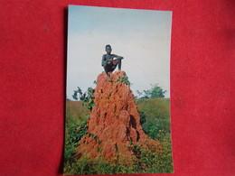 Guinea - Guiné Portuguesa - Monte De Baga-Baga - Bissau - Guinea-Bissau