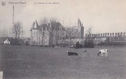 HAM SUR HEURE         LE CHATEAU VU DES PRAIRIES - Ham-sur-Heure-Nalinnes