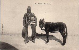 TUNIS - Baba Salem (âne) - Tunisia