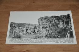 8929-    RUINES DU CHATEAU DE FRANCHIMONT - Theux
