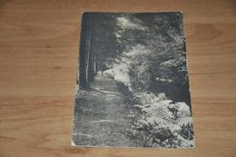 8933-    WESTEND - 1911 - Westende