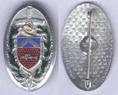 Insigne De La 103e Section D'Infirmiers Militaire - Services Médicaux