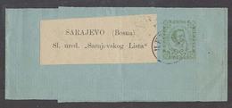 MONTENEGRO. 1895 (14 June). Cettigne - Sarajevo, Bosnia (17 June). 3n Green Stat Wrapper Backstamped. Fine Used. - Montenegro
