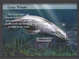 O768 DOMINICA FAUNA FISH & MARINE LIFE WHALES OF THE CARIBBEAN 1BL MNH - Baleines