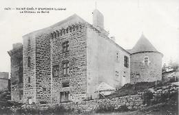 SAINT  CHELY D'APCHER  ( 48 )  - Le Château De Bellié - Saint Chely D'Apcher