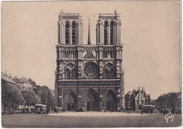 Paris: 3x RENAULT TN6 AUTOCAR/AUTOBUS, OLDTIMER VOITURES - Notre-Dame Et Le Parvis - Toerisme