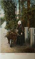 Laren (NH) Sprokkelaarster Bij Dennenoord Ca1900 - Laren (NH)