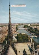 PARIS  - La Flèche De Notre-Dame - - Notre Dame De Paris