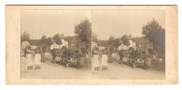 PHOTO STEREO - CAMPAGNE TRIPLE ATTELAGE DE CHEVAUX CALECHE - PETITES FILLES - Photos Stéréoscopiques