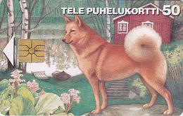 Télécarte à Puce FINLANDE - Animal - CHIEN Loup BERGER  - SHEPHERD DOG Chip Phonecard - HUND Telefonkarte - Chiens