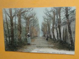 Lot De 18 Cartes Postales Anciennes -- Villes & Villages Du CHER Dont 16 Avec ANIMATION -- Voir Tous Les Scans - 5 - 99 Cartoline