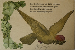 Balk (Frl.) Een Duifje Komt Uit Balk Gevlogen.... 1905 - Nederland