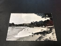 7211 - Vues De L'Ain GEVRIEUX La Plage - 1956 Timbrée - France