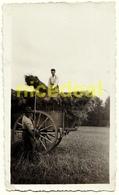 Ancienne Photo Amateur Moissonneurs Agriculteurs Paysans Paille Tombereau Voiture Charrette Moissons Récolte Tirage 1934 - Professions