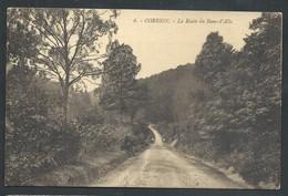 +++ CPA - CORBION - La Route Du Banc D'ALLE   // - Bouillon