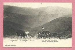 68 - Hautes Vosges - Vogesen - HOHNECK - Nels, Série 309 N° 4 - Marcaire - Vaches - Vue Vers La Vallée De Munster - France
