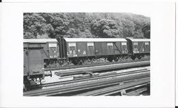 Photo -Train - Wagon - Gare De  Arzviller En 1956 - DB 209910 Moselle - 57 - Trains