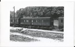 Photo -Train - Wagon - Gare De  Arzviller En 1956 -Moselle - 57 - Trains