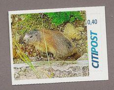 Privatpost - CITIPOST -  Alpenmurmeltier (Marmota Marmota) - BRD