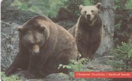 Slovakia - Medveď Hnedý / Bear - Slovaquie