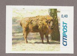 Privatpost - CITIPOST -  Wisent Oder Europäische Bison (Bos Bonasus) - Wild