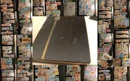 Tunisie Et Algérie - Collection/stock Timbres Neufs ** (quelques Oblitérés) - Cote +++ - Collections (en Albums)