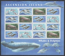 O875 2009 ASCENSION ISLAND FAUNA DOLPHINS & WHALES #1063-6 MICHEL 48 EURO SH MNH - Baleines