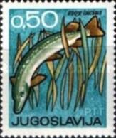 USED  STAMPS Yugoslavia - Hunting And Fishing Fair, Novi Sad -  1967 - 1945-1992 Socialist Federal Republic Of Yugoslavia