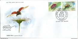 India  Ladybird Beetle  First Day Cover , First Day Cancelled, Insects, Coccinellidae, As Per Scan - Insectes