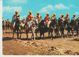 C.P. - PHOTO - BORNU - HORSEMEN - CAVALIERS DE BORNU - NIGERIA - Nigeria
