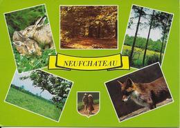 Neufchateau - Neufchâteau
